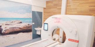 CT vyšetrenie chorého zvieraťa